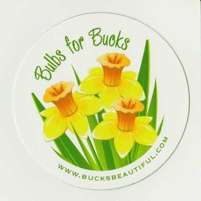 BucksBeautifulMagnet_SiteWeb