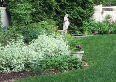 garden pic4